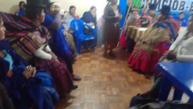 Photo of Una representante de las Bartolinas  Quechua  formadora de lideres es la nueva Ministra de Cultura