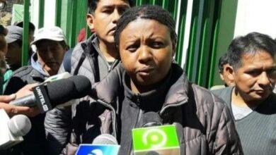Photo of Justicia anula eleccion de directiva de Adepcoca y restituye a Elena Flores en el cargo