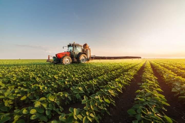 El Gobierno aprueba decreto supremo para la recuperación del aparato productivo agropecuario
